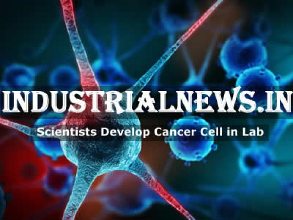 Scientists Developed Mini-Tumor In Laboratory To Fight Cancer